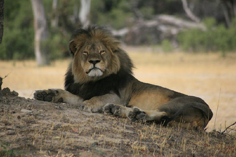 July 30th, 2015